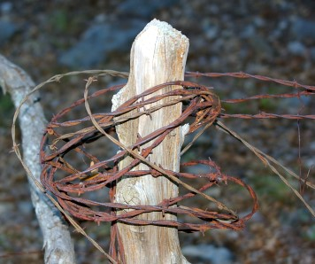 bobwire wrapped around a fense post