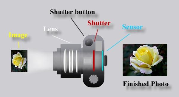 Diagram for a digital camera