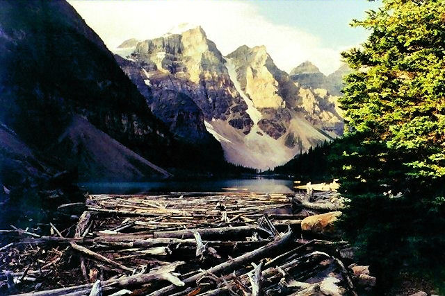 Log jam on Moraine Lake, Canada