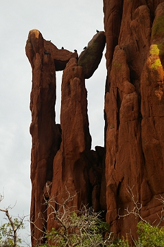 Rock formation at The Garden Of The Gods, CO