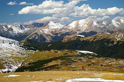 Scene From Trail Ridge Road